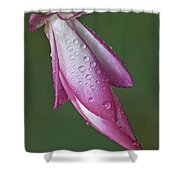 Cactus Flower Drops Shower Curtain