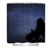 Cactus Wren In The Night Shower Curtain