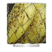 Caged Bananas Shower Curtain