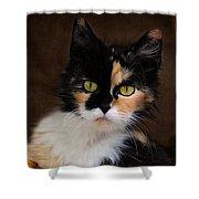 Calico Cat Portrait Shower Curtain