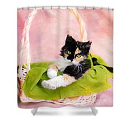 Calico Kitty In Basket Shower Curtain