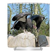 California Condor Shower Curtain