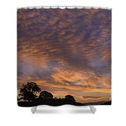 California Oaks And Sunrise Shower Curtain