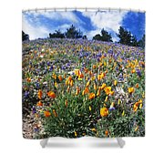 California Poppies And Lupins On A Hill Shower Curtain