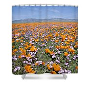California Poppies And Other Shower Curtain