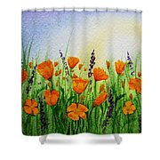 California Poppies Field Shower Curtain