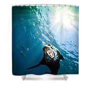 California Sea Lion, La Paz, Mexico Shower Curtain by Todd Winner