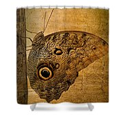 Caligo Shower Curtain