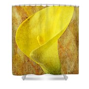 Calla Lily Beauty  Shower Curtain
