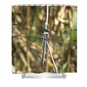 Cammo Shower Curtain