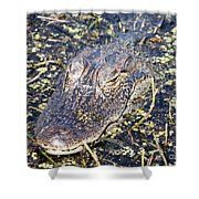 Camouflaged Gator Shower Curtain by Carol Groenen
