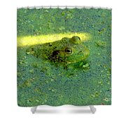 Camoufrog Shower Curtain