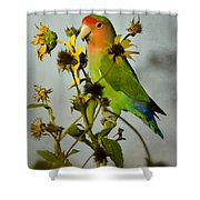 Can You Say Pretty Bird? Shower Curtain