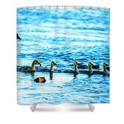 Canada Geese Family II Shower Curtain