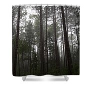 Canadian Forest Shower Curtain