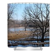 Canadian Geese Take Flight Shower Curtain