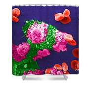 Cancer Cell Death, Sem 3 Of 6 Shower Curtain