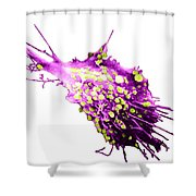 Cancer Cell Shower Curtain