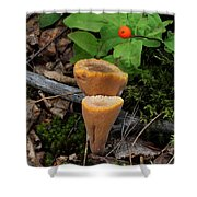 Candle Fungus Shower Curtain