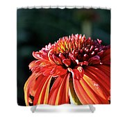 Candy Corn Cone Flower Shower Curtain