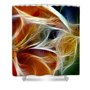 Candy Lily Fractal Panel 3 Shower Curtain