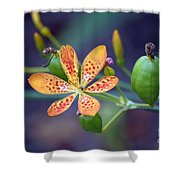 Candy Lily Shower Curtain