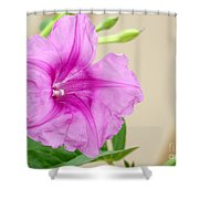 Candy Pink Morning Glory Flower Shower Curtain