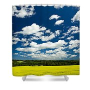 Canola Field, Brookfield, Prince Edward Shower Curtain