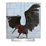 Canopy Hunting Shower Curtain