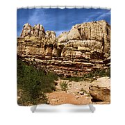 Canyon Castle Shower Curtain