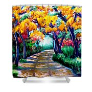 Canyon De Chelly In The Fall Shower Curtain