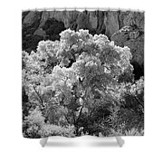 Canyon Treasure Shower Curtain