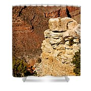 Canyon View V Shower Curtain
