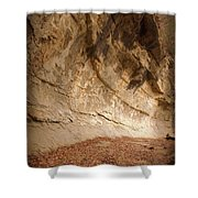 Canyon Wall Shower Curtain