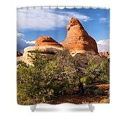 Canyonlands Needles Shower Curtain