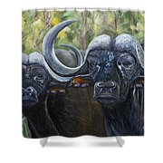 Cape Buffalo 2 Shower Curtain