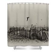 Cape May Morning Shower Curtain by Bill Cannon