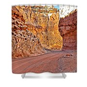 Capitol Gorge Trail At Capitol Reef Shower Curtain