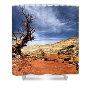 Capitol Hike Shower Curtain