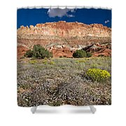 Capitol Reef Autumn Wildflowers Shower Curtain