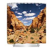 Capitol Reef Cohab Canyon Shower Curtain