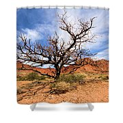 Capitol Tree Shower Curtain