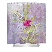 Captured Blossom Shower Curtain