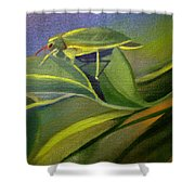 Card Of Fancy Bug Shower Curtain