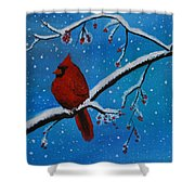 Cardinal Christmas Shower Curtain