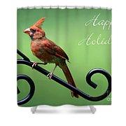 Cardinal Holiday Card Shower Curtain