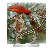 Cardinal Kisses Shower Curtain