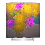 Carnation Glow Shower Curtain