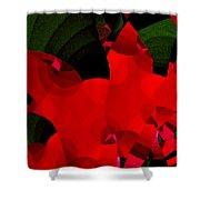 Carnivale 4 Shower Curtain