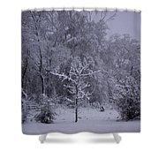 Carolina Snowfall Shower Curtain